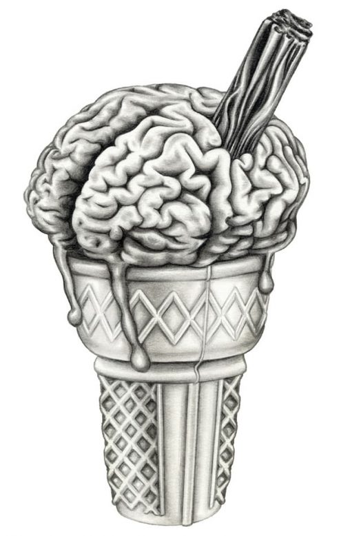 Cold comfort: why does a chill on the tongue lead to a pain in the head. Illustration: Lauren Mortimer